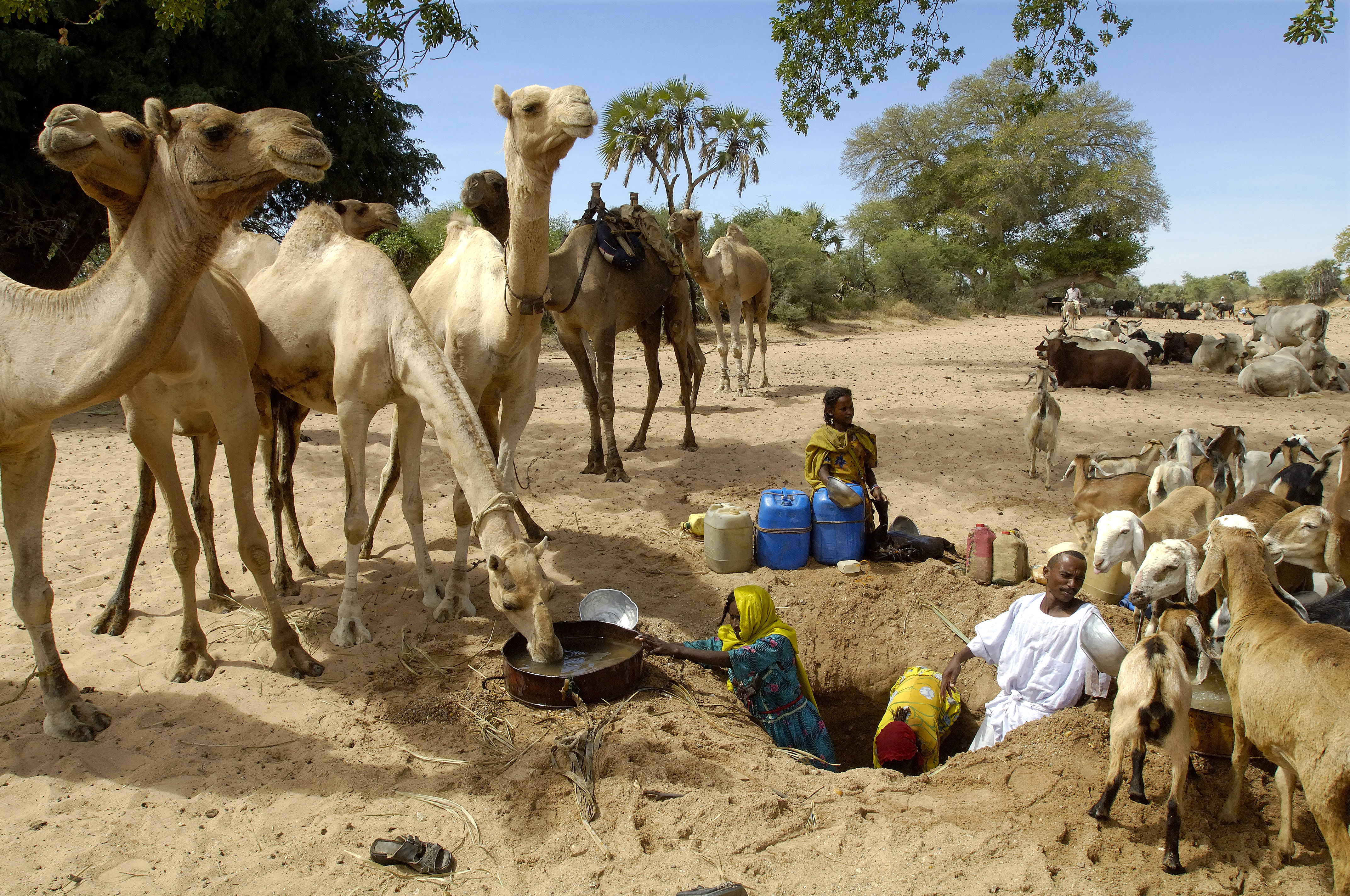 reducing competition for water in sudan unwater
