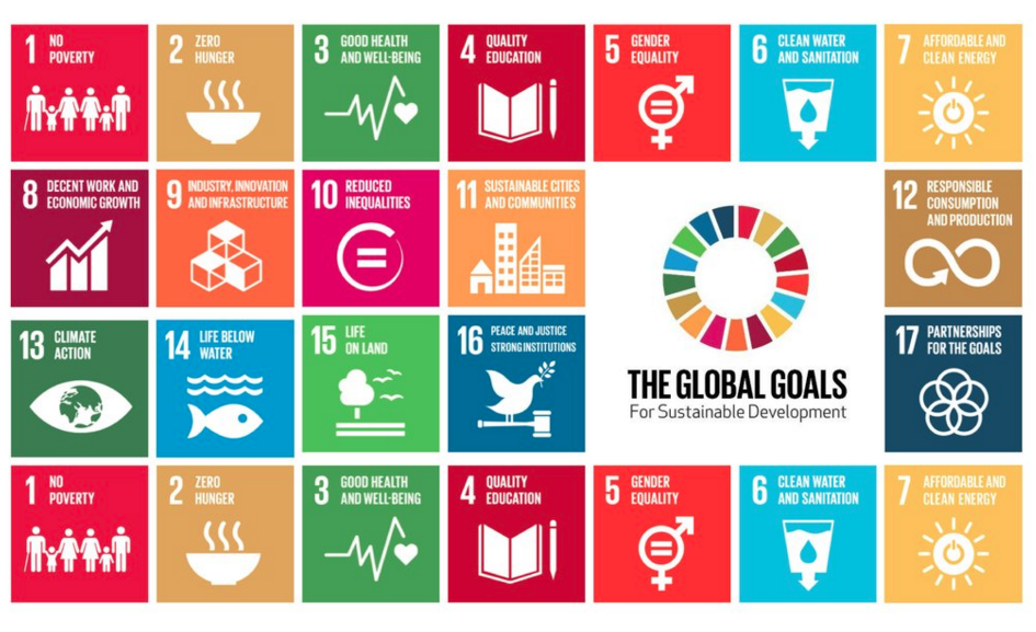 A Study Reveals That Not all UN Sustainable Development Goals are good for the environment, reveals study