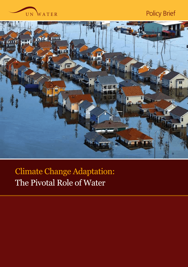 Climate Change Adaptation: The Pivotal Role of Water