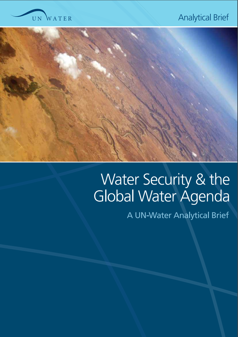 Water Security and the Global Water Agenda