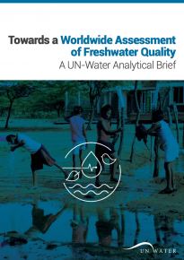 Towards a Worldwide Assessment of Freshwater Quality