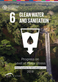 Progress on Level of Water Stress – Global baseline for SDG indicator 6.4.2