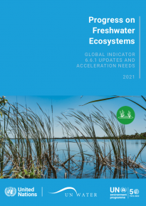 Progress on Water-related Ecosystems – 2021 Update